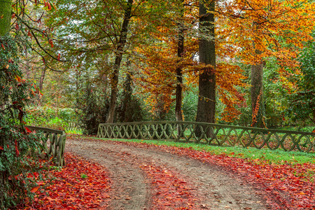 leaves green: Stone fence along footpath in colorful autumnal park of Racconigi in Piedmont, Northern Italy.