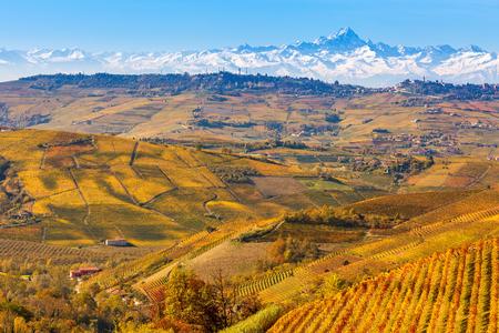 Colorful autunnali vigneti e le montagne innevate sullo sfondo in Piemonte, Nord Italia.