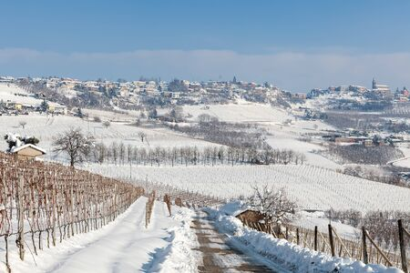 vineyard: Hills and vineyards of Langhe covered with snow in Piedmont, Northern Italy.