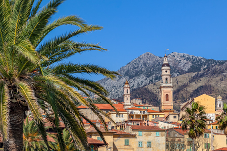 menton: Palm and old town of Menton with colorful houses and churches under blue sky.