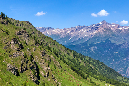 View of mountain slope covered with green grass and trees as mountain ridge on background under blue sky in Piedmont, Northern Italy. Banco de Imagens