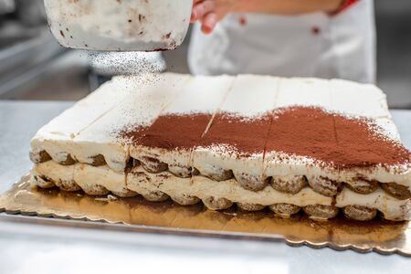 Making tiramisu cookies with savoiardi and mascarpone in the restaurant kitchen photo