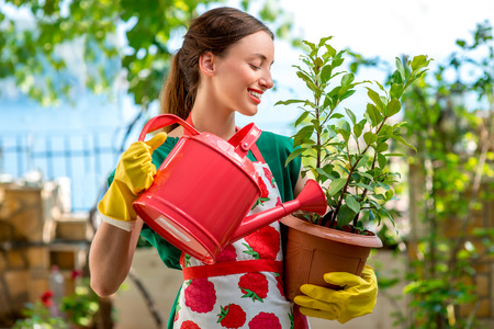 beautiful garden: Young woman in apron and working gloves taking care for  flower in in the garden