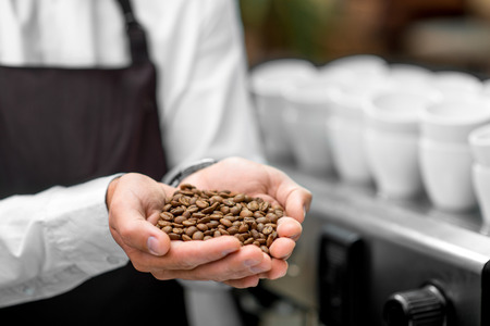 making up: Male hands holding roasted coffee beans. Close up view Stock Photo