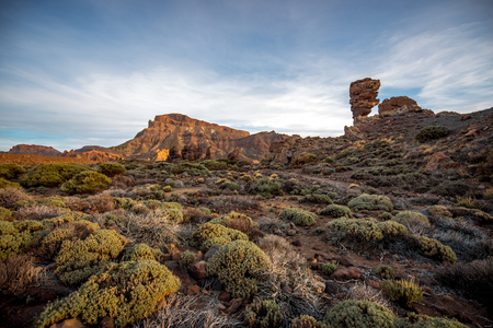 island: Beautiful rocky landscape with green bushes in Teide park on Tenerife island on the sunset
