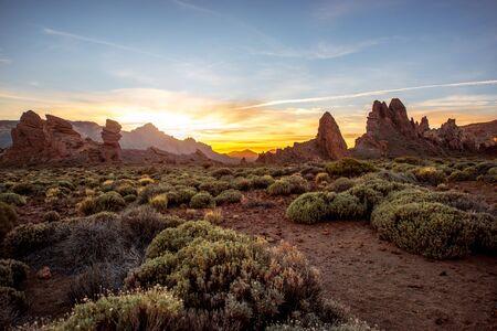 日没には、テネリフェ島テイデ公園の緑の茂みで美しい岩の多い風景