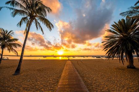 Schöne Aussicht auf Teresitas Strand in der Nähe von Santa Cruz de Tenerife mit Palmen und Fußweg auf den Sonnenaufgang Standard-Bild - 51503576