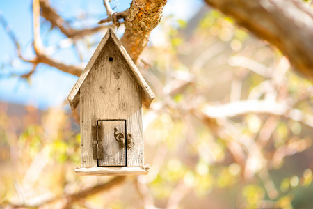Wooden birdhouse hanging on the tree with blurred background Stock Photo