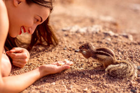 moorish: Excited woman feeding moorish squirrel on Fuerventura island in Spain