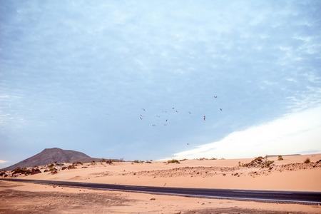 animales del desierto: Desert road on Corralejo dunes on Fuerteventura island in Spain Foto de archivo