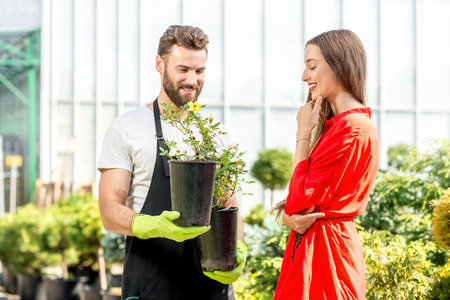 flower seller: Handsome flower seller helping female buyer to choose a flower standing in the plant store. Customer service in the flower shop