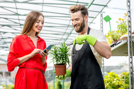 smiling woman in a greenhouse: Handsome flower seller helping female buyer to choose a flower standing in the plant store. Woman using smartphone in the plant shop