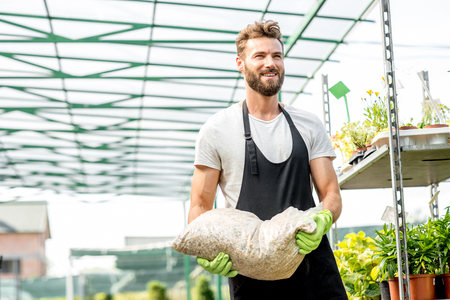 hotbed: Handsome gardener with apron and working gloves carrying bag with soil for growing plants in the greenhouse Stock Photo