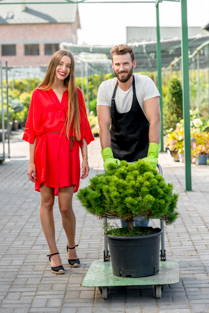 tree service: Handsome flower seller helping female buyer to take out a tree with trolley from the plant store. Customer service and delivery in the flowers shop
