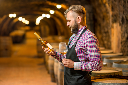 white beard: Handsome sommelier in apron and checkered shirt checking wine bottle in the old cellar. Maturing wine in oak barrels in underground natural cellar.