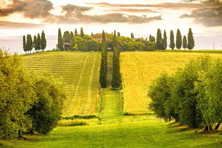 pienza: Beautiful tuscan landscape view in Val dOrcia region near Pienza town on the morning in Italy Stock Photo