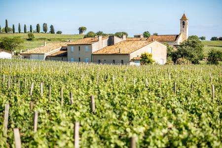 フランスのサンテミリオンのブドウ畑