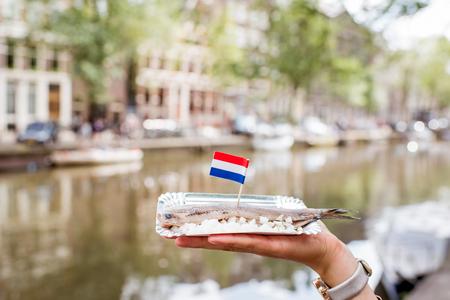 にしんオランダの伝統的なスナック 写真素材