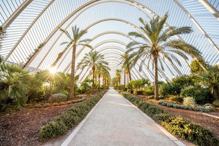 발렌시아, 스페인 -2007 년 8 월 18 일 : 발렌시아에서 산티아고 칼라 트 라바와 펠릭스 Candela에 의해 설계 예술 및 과학, 문화 및 건축 복잡 한 도시 공원