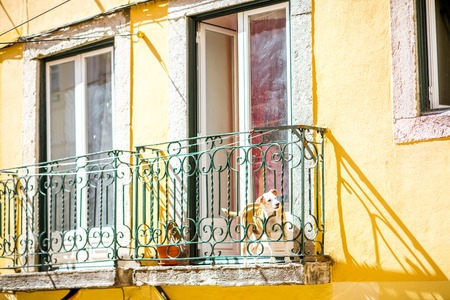 View on the old balcony with dog looking out the fence in Lisbon city, Portugal Banco de Imagens