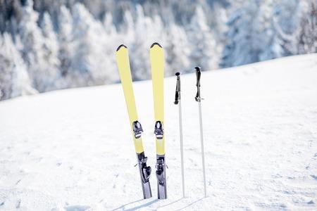 背景に凍った森を持つ雪山に棒でスキー