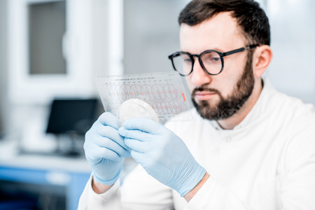 Male laboratory assistant working with bacteria in petri dish in the bacteriological department Stock Photo
