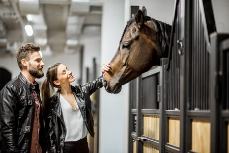 Young couple riders in leather jackets standing in the beautiful stable stroking a horse head