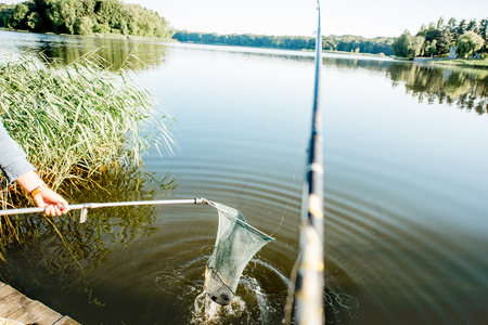 Catching fish with fishing net in the lake during the morning light