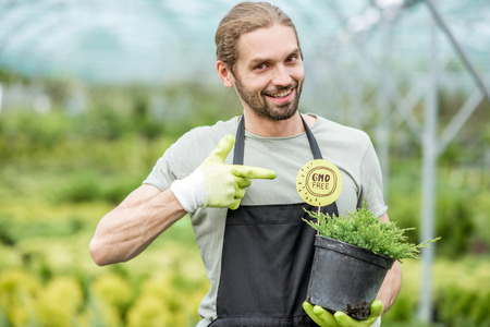 Happy gardener holding conifer bush with green plate in the greenhouse Stock fotó