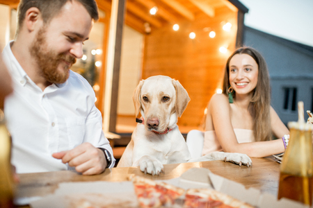 Cute dog dining with people during the evening light on the backyard of the house outdoors Banque d'images - 105233919