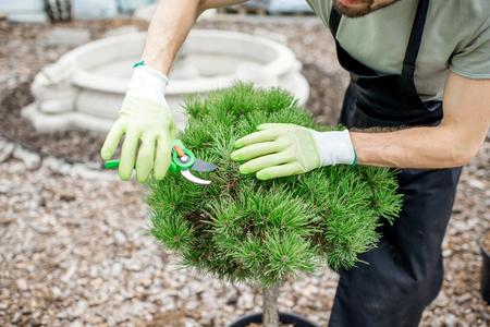 Knappe tuinman in uniform werken verzorgen van decoratieve bush snijden bladeren in de tuin