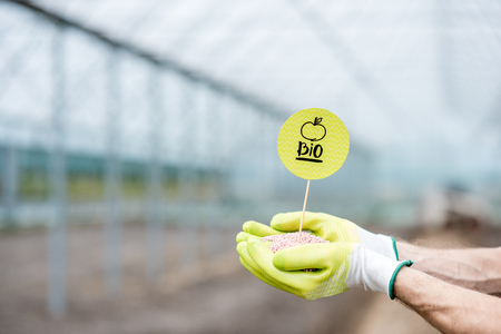 Farmer holding bio fertilizers with green plate in the glasshouse, close-up view