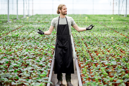 Portrait of the happy owner with raised hands standing in the greenhouse of plant plantation Stok Fotoğraf - 104849270