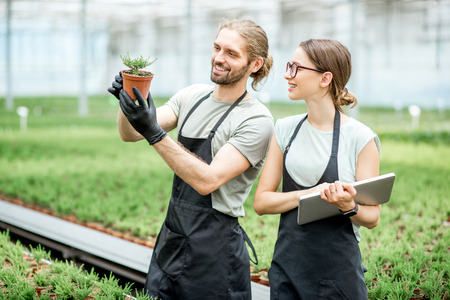 Couple of workers working with digital tablet supervising the growing of plants in the greenhouse of the plants production Foto de archivo