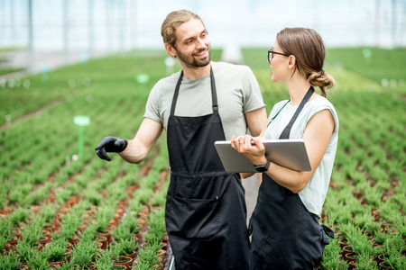 Couple of workers working with digital tablet supervising the growing of plants in the greenhouse of the plants production Imagens