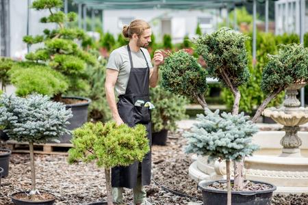 Handsome gardener in working uniform taking care of ornamental bush in the garden Stock Photo - 104866978