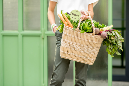 Halten des Beutels voll des frischen Bio-Gemüses vom lokalen Markt auf dem grünen Hintergrund Standard-Bild