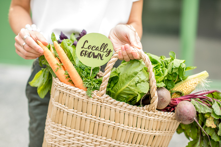 Holding bag full of fresh organic vegetables with green sticker from the local market on the green background Stockfoto