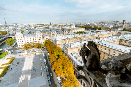 Aerial panoramic view of Paris with gargoyle sculpture on the Notre-Dame cathedral during the morning light in France