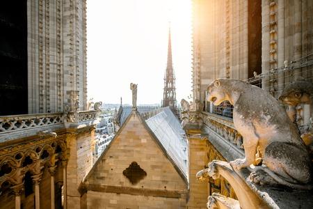 Cathédrale Notre-Dame au sommet avec des sculptures de gargouilles à Paris
