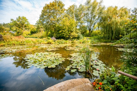 Landscape view on the beautiful Claud Monets lake with lilies, famous french impressionist painter in Giverny town in France