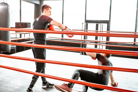 Boxer getting knockdown falling on the floor during a boxing battle