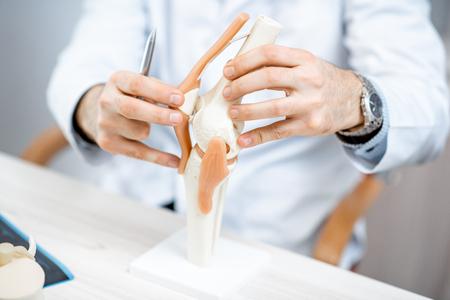 Primer plano del terapeuta que muestra el modelo de la articulación de la rodilla durante la consulta médica Foto de archivo