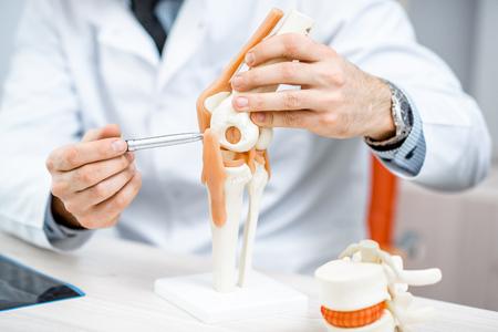 Primo piano del terapista che mostra il modello dell'articolazione del ginocchio durante la consultazione medica