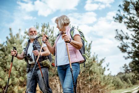 Szczęśliwa para starszych wędrówek z kijami trekkingowymi i plecakami w młodym lesie sosnowym. Cieszyć się naturą, dobrze się bawić na emeryturze