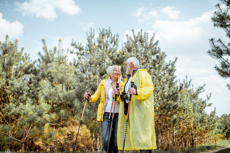 Happy senior couple in yellow raincoats hiking with trekking sticks in the young pine forest. Concept of an active lifestyle on retirement