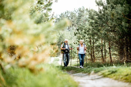Happy senior couple hiking with trekking sticks and backpacks at the young pine forest. Enjoying nature, having a good time on their retirement Stockfoto