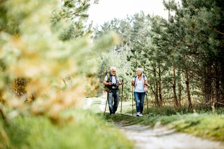 Glückliches Seniorenpaar, das mit Trekkingstöcken und Rucksäcken im jungen Kiefernwald wandert. Die Natur genießen, sich im Ruhestand wohlfühlen Standard-Bild