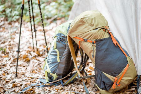 Campsite with tent, backpacks and trekking sticks in the forest Stock fotó