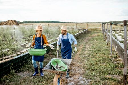 Two well-dressed farmers or agronomists walking on the farmland for growing snails, rear wide angle view Stok Fotoğraf - 127935960